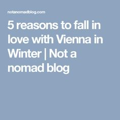 5 reasons to fall in love with Vienna in Winter | Not a nomad blog