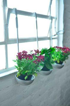 Ideias sustentáveis para reforma de apartamento - apê sustentável - reforma - dream home - arquiteta Daisy Dias - cozinha - flowers