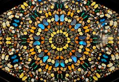 Damien Hirst Butterflies (real butterflies were used to make this...)