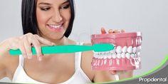 El cuidado dental en las distintas fases del embarazo