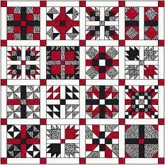 2011 Sampler ~~ Instructions provided for each block