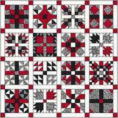2011 Sampler link to all of these blocks