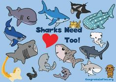 Sharks need love too!