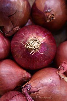 red onions cipolle LA PASSERA DI MARE ristorante di Pesce, Firenze Florence Chianti www.passeradimare.it