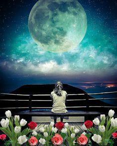 ⁀⋱‿ Boa Noite! Que possamos com a chegada da noite permitir bons sentimentos. Que as estrelas possa nos trazer esperança de uma amanhã maravilhoso. Que a lua nos faça sonhar e acreditar que tudo é possível. A noite nos proporciona uma paz tamanha que só é possível de ser entendida por aqueles que realmente sentem com a alma e com o coração.  ⁀⋱‿ ✍ Luciano Bueno