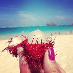 Rambutan. Yum!!! Check