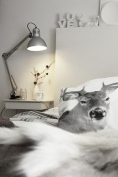pillowcase with a deer on it...mmm I've had that look from deer in front of my car...