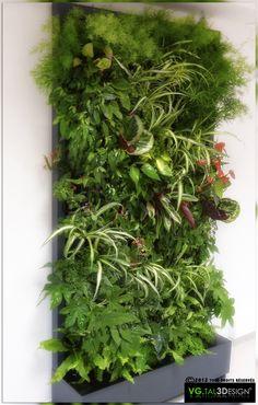 Simple et rapide d'installation, 100% naturelles. http://www.mur-vegetal-interieur.fr/