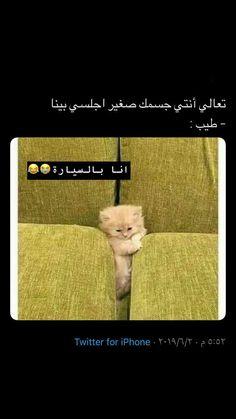 Funny Science Jokes, Some Funny Jokes, Really Funny Memes, Crazy Funny, Arabic Jokes, Arabic Funny, Funny Arabic Quotes, Funny Qoutes, Jokes Quotes