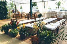 Casamento na praia - decoração cerimônia tropical - orquídeas ( Foto: Duo Borgatto )