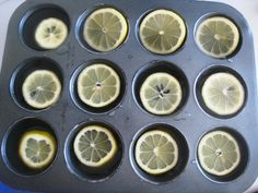 Preserve lemon slices in ice for a deliciously cool addition to water.
