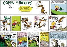Calvin and Hobbes strip for August 6, 2017
