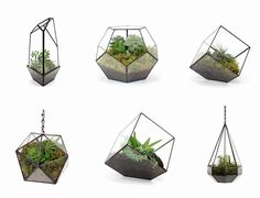 Handmade-Hanging-and-tabletopplants-terrariums-2