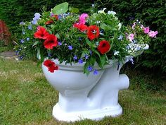 LOVE THIS......and, I WILL DO IT w/ our Old BLACK TOILET!!!!  Majestic!!!!