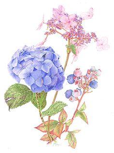 Blues & Hues, Coloured Pencil Art by Janie Pirie