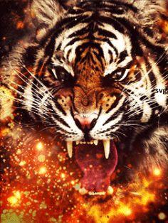 Огненный тигр - анимация на телефон №1333112