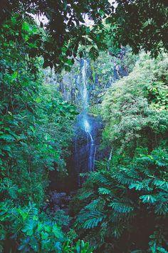 Hawaii - Maui : Road to Hana