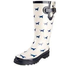Image result for dachshund wellington boots