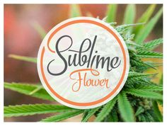 The Sublime Flower product line. Producing elevated cannabis products.