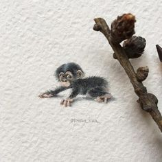 Exquisitely Detailed Watercolor and Pencil Illustrations of the Animal World in Miniature via @laughingsquid
