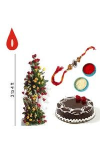 Your Feelings Reach New Heights With This Expression Of Love To Your Brother This Rakhi