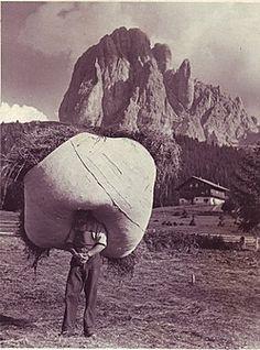 [ca. 1953] Eduard Moroder (Bernon) trägt das Heu in den Stadel. Es brauchte einiges an Kraft, um die vollen Heutücher zu tragen. Im Hintergrund der mächtige Langkofel. - Fam. Eduard Moroder (Bernon)