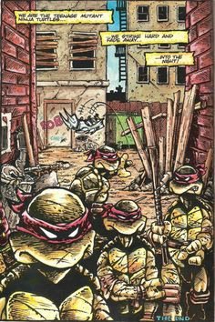 TMNT, Issue 1, 1984. By Eastman & Laird