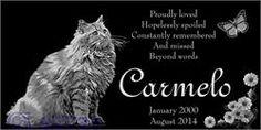 Site Web petmemorials.us.com E-Commerce - Cat Pet Memorials