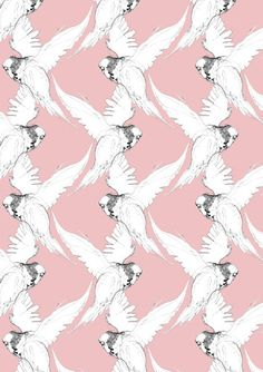 Budgie Pattern by Kerry Lemon