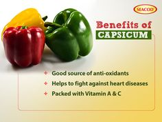 This is one of the best benefits of capsicum and there are three major benefits of the capsicum 1-Good source of anti-oxidants 2-helps to fight against heart disease 3-Packed with Vitamin A & C