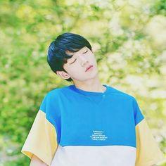 안형섭 Ahn Hyungseob