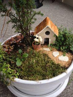 Create you own LIGHTED fairy garden by Abizarrebazaar on Etsy, $50.00