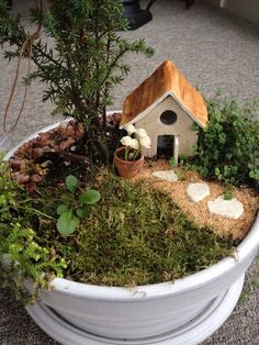 Create you own LIGHTED fairy garden