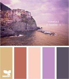 coastal tones, dark furniture, pale, peachy walls, a tan rug with a rusty throw and some beautiful purple accent pieces. want.