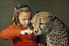 unrar:  A cheetah licks ice cream from a spoon held by a young girl, David Boyer.