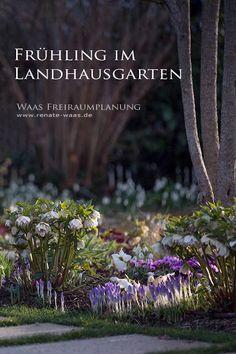 Gartenplanung, Gartendesign und Gartengestaltung: Blumenbeete mit Blumenzwiebeln