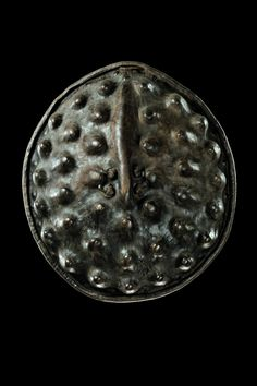 AMARRO shield, Ethiopia, (60 cm). Hippo skin. Their large handles were borrowed from the double-handled Islamic round shields. The shields in use today invariably have only a single grip centered in the middle, so that it is possible to push the shield up the arm almost to the shoulder. Frequently rubbing far into the shiny, darkly coloured surface ensured elasticity and resilience.