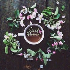 Good Morning Morning Words, G Morning, Good Morning Flowers, Good Morning Messages, Good Morning Greetings, Good Morning Good Night, Morning Wish, Morning Pictures, Good Morning Images