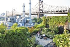The jaw-dropping view from Philip Roche and Doug Brito's New York rooftop garden.
