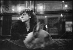 Walker Evans Subway Portrait-Woman in Flower-Brim Hat with Dog, New York City 1938 Walker Evans, Eugene Richards, The Beatles 1, Jeanloup Sieff, Ralph Gibson, Willy Ronis, Honore Daumier, August Sander, Elliott Erwitt