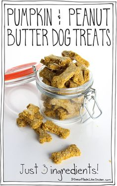 3 Ingredient Pumpkin & Peanut Butter Dog Treats! So easy to make. Perfect gift for your furry friends. #itdoesnttastelikechicken