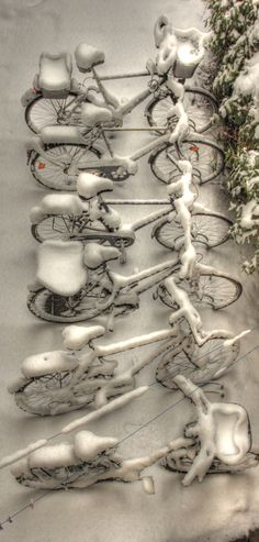 Winter bicycles by Olaf Wiesner
