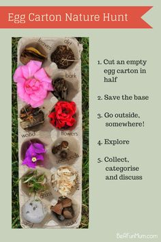 Egg Carton Nature Hunt | Be A Fun Mum