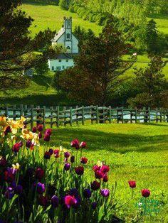 Isla del Príncipe Eduardo, en Canadá