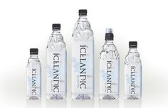 Icelandic Glacial Water Family Photo