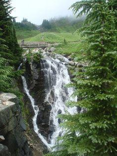 Mt. Rainier Meadow Hike