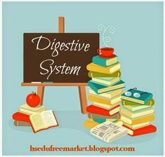 Homeschool Educational Free Market: Free Homeschool Lesson Plans, Online Resources, and Printables for a Unit about the Digestive System