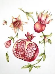 Pomegranate art print Left flower and bud Pomegranate Drawing, Pomegranate Tattoo, Pomegranate Art, Fruits Drawing, Floral Drawing, Botanical Prints, Jewish Art, Fantasy Art, Art Projects