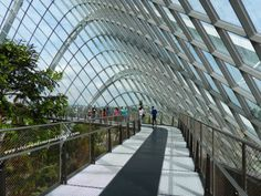 Cloud Forest, Gardens by the Bay #Singapore #SingaporeTravel #GardensByTheBay #CloudMountain