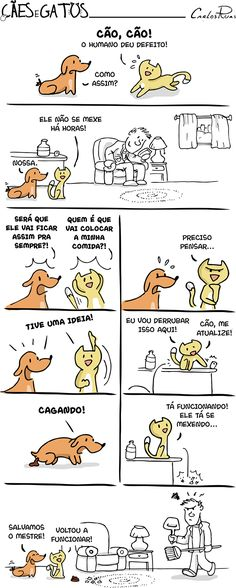 Cães e Gatos – Quando o humano dá defeito I Love Cats, Dog Love, Cute Cats, Funny Cats, Animals And Pets, Funny Animals, Cute Animals, Funny Cartoons, Funny Comics